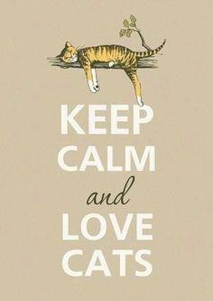Hard to Keep Calm but I Do Love Cats! | Keep Calm and Love Cats | » ValeStrangeHouse.tumblr.com