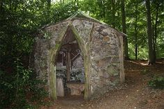 Rare Old Hermitage. Brocklesby Woods Lincolnshire