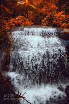 The waterfall #PatrickBorgenMD