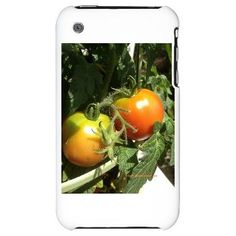 Sunisthefuture-Tomato1 iPhone3 Case at Sunshine Online Store (www.sunisthefuture.com). Simply click on the image twice to get to the store, then select the desired design to order the item. Enjoy!