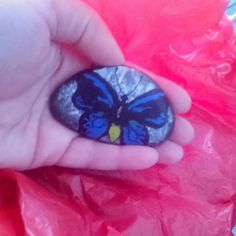 One of the first butterflies I have ever painted on a stone a long while ago #paintedrock #paintedstone #thestunnerboutique #Australia #butterfly #stoneart #neverforgettolive