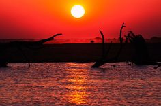 A blood-red sky over the Chobe National Park, Botswana.  Photo by Gareth Evans.
