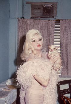 Jayne Mansfield with a chihuahua in the dressing room of the Latin Quarter Night Club circa 1970 New York