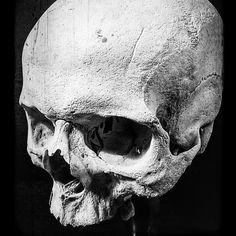 November 14 2019 at Anatomy Tattoo, Skull Anatomy, Skull Reference, Anatomy Reference, Skull Stencil, Skull Art, Skeleton Drawings, Dark Pictures, Beautiful Pictures