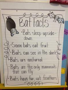 Bat anchor chart