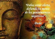 buda (6)