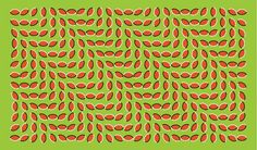 The best optical illusions to bend your eyes and blow your mind – in pictures | Children's books | The Guardian