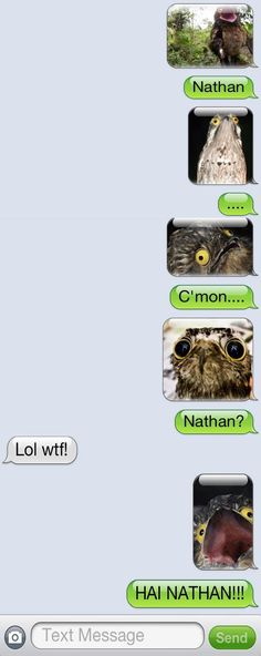 Nathan has really creepy friends….            I really want to do this to someone one day or drunken night
