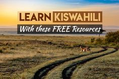 The best free dictionary, courses, textbooks and audio we've found for learning Swahili - from people actually learning it (and who speak it). Kids Educational Crafts, Educational Websites, German Language Learning, Foreign Language, French Lessons, Spanish Lessons, Teaching French, Teaching Spanish, Spanish Activities