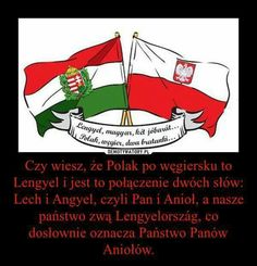 Węgier Polak dwa bratanki Poland History, Visit Poland, Good Mood, Good To Know, Einstein, Fun Facts, I Am Awesome, Lol, Humor