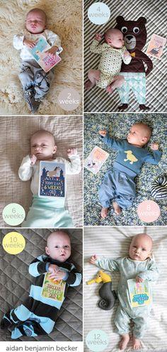 Milestone Baby Cards and Decor8, so cute.