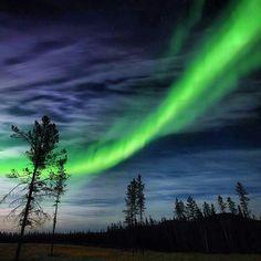 Northern Lights-Whitehorse, Yukon