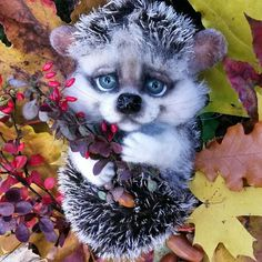 Love this needle felted Hedgehog by Tatyana Dmitrieva from Russia
