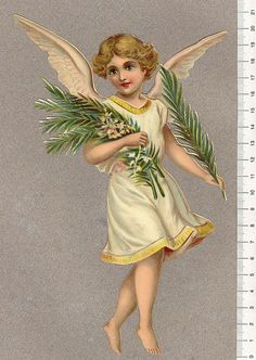 Angel-med-olivkvist | Flickr - Photo Sharing!