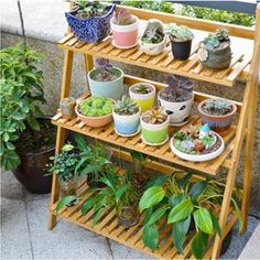Flower Pot Plant Stand 3 Tier Flower Planter Rack Shelf Shelves Organizer With Gloves and Tools Tiered Planter, Diy Planter Box, Diy Planters, Indoor Garden, Garden Pots, Balcony Gardening, Garden Ideas, Apartment Balcony Garden, Gardening Blogs