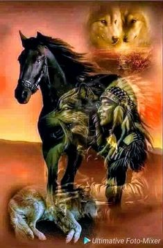 Wild and free.that is my spirit Native American Horses, Native American Paintings, Native American Pictures, Native American Wisdom, Native American Beauty, American Indian Art, Native American History, American Indians, Native Indian