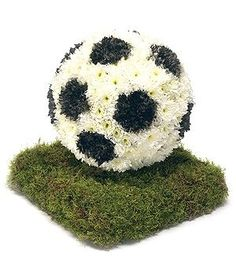 Football - Passion For Flowers