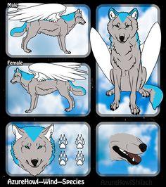 Wind wolf species - AzureHowl by AzureHowlShilach.deviantart.com on @DeviantArt