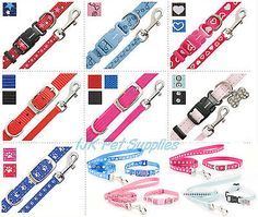 Ancol small bite #puppy / small dog #collar and lead sets set #fully adjustable,  View more on the LINK: http://www.zeppy.io/product/gb/2/270830280045/
