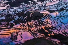 19 Mesmerizing Photos Of Rice Terraces That Speak For Themselves  Yuanyang County, Yunnan, China