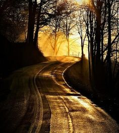 Jim Crotty presents April Sunrise on Ilesboro Road in Hocking Hills Ohio Road trip to anywhere but here! Beautiful World, Beautiful Places, Beautiful Roads, Skier, Back Road, Winding Road, All Nature, Jolie Photo, Photos