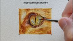 Learn to paint the eye of this orange ginger cat in watercolor! Watercolor Painting Techniques, Painting Videos, Painting Lessons, Watercolor Paintings, Watercolours, Watercolor Cat, Watercolor Animals, Ragdoll Kittens, Funny Kittens
