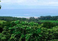 Se estrella avión en Costa Rica que transportaba a 12 personas