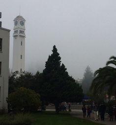 Otro día de neblina en Concepción