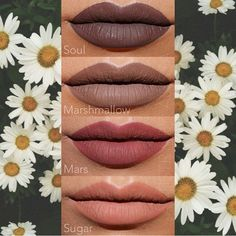 Bold Uncensored Makeup — Happy Sunday dolls. Gotta love these lip swatches... Coloured Raine, Lip Swatches, Lipstick Collection, Beauty Book, Lipstick Shades, Matte Lips, Happy Sunday, Makeup Inspo, Beauty Makeup