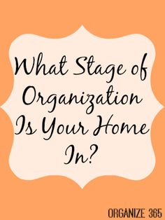 What Stage of Organization Is Your Home In?  | Organize 365
