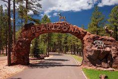 Bearizona - Williams, AZ - Looking forward to this, even if Bears are hibernating!