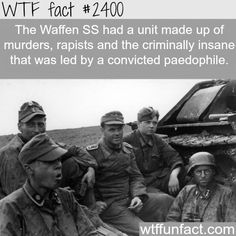 The Waffen Ss Fun Facts