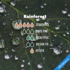 Rainforest — Essential Oil Diffuser Blend