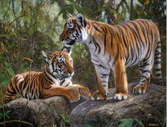 Imágenes Arte Pinturas: Paisajes con tigres