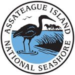 Assateague Island National Seashore - Official Government Website. Share the beach with the ponies, see the wildlife, go camping!