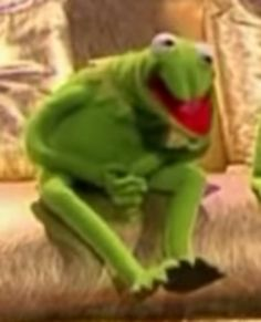 r u ok Kermit Funny Kermit Memes, Cartoon Memes, Stupid Funny Memes, Funny Relatable Memes, Haha Funny, Hilarious, Cartoons, Meme Pictures, Reaction Pictures