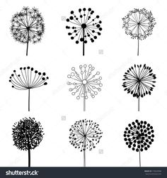 Floral Elements For Design, Dandelions Stock Photos 179629088: Shutterstock
