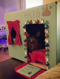 Here's some cool cat stuff for you a diy cat house out of cardboard box, paints, an old tshirt, grocery bags (for crinkle sounds) and glass beads. That's one happy kitty. ☺
