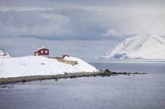 Islannissa on ulkomaalaisen helppo saada töitä.