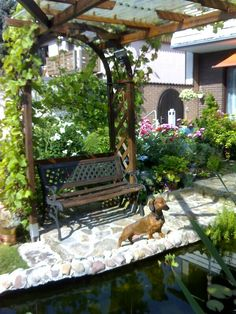 Dackel Angie, am liebsten zu Hause im Garten - aufgenommen 2015 vom Immobilienmakler in Hannover: arthax-immobilien.de