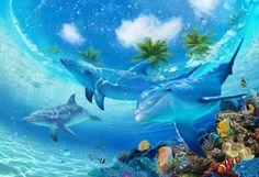 Dolphin Screensaver - FREE download Dolphin Screensaver