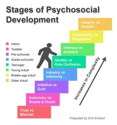 "Erikson's Stages of Psychosocial Development---This is my favorite subject in general psych.  Each stage has to be achieved before moving onward.  Individuals with inferior or superior complexes typically are ""stuck"" in the fifth developmental stage, Identity vs. Role Confusion."