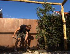 Hippe eco-tuin in De Meern (deel 2) - Eigen Huis en Tuin