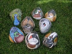 Rockpainting - Duck group 0002