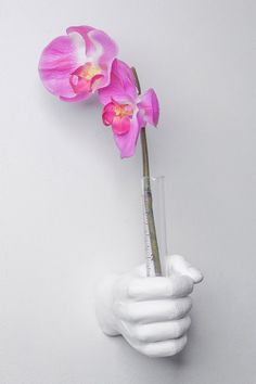 Interior Illusions - White Wall Vase Hook is now 80% off. Free Shipping on orders over $100.