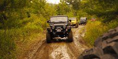 Bantam Jeep Heritage Festival - Butler, Pennsylvania Jeep Wj, Jeep Wrangler Tj, Pennsylvania History, Sci Fi Novels, Future Travel, Jeep Life, Butler, Classic Cars, Monster Trucks