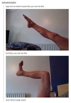 This person who is concerned about legs.   31 Tumblr Users That Are Not Okay