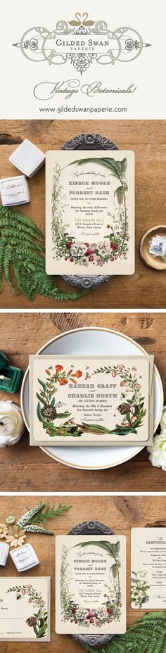 These vintage wedding invitations are Inspired by the scientific botanical illustrations of the 1850s. This design will surely set the tone of your wedding day! These invitations and save the date cards can be customized to match your own wedding palette colors... burgundy, blush, coral...So sweet and an oh, so vintage, this wedding stationery is available in full wedding suites, save the dates, programs, menus etc. Gilded Swan Paperie- your number one vintage inspired wedding stationery… Wedding Invitation Trends, Botanical Wedding Invitations, Wedding Stationery, Forest Party, Save The Date Cards, Swan, Fairytale, Dates, Vintage Inspired