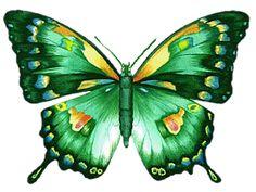 See the stamp chantalmi papillon butterfly blue green yellow purple vert bleu mauve purple orange multicolore belonging to chantalmi on PicMix. Butterfly Drawing, Butterfly Pictures, Butterfly Wallpaper, Art Papillon, Green Butterfly, Beautiful Butterflies, Emerald Green, Blue Green, Metal Art
