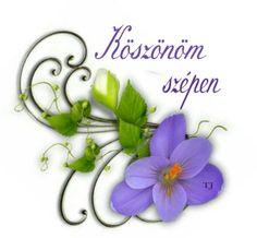 Happy Birthday, Wreaths, Flowers, Decor, Happy Aniversary, Dekoration, Happy Brithday, Decoration, Door Wreaths